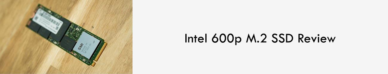 intel-600p-Leo-parrill